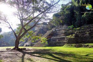 Zona Arqueológica de Palenque Historia, Fotografías y Recomendaciones: